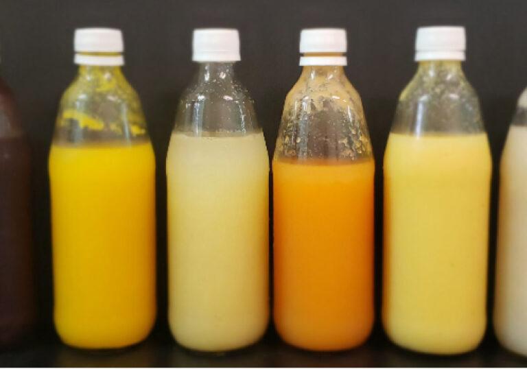Brasileiros criam 1º probiótico para intolerantes à lactose e veganos